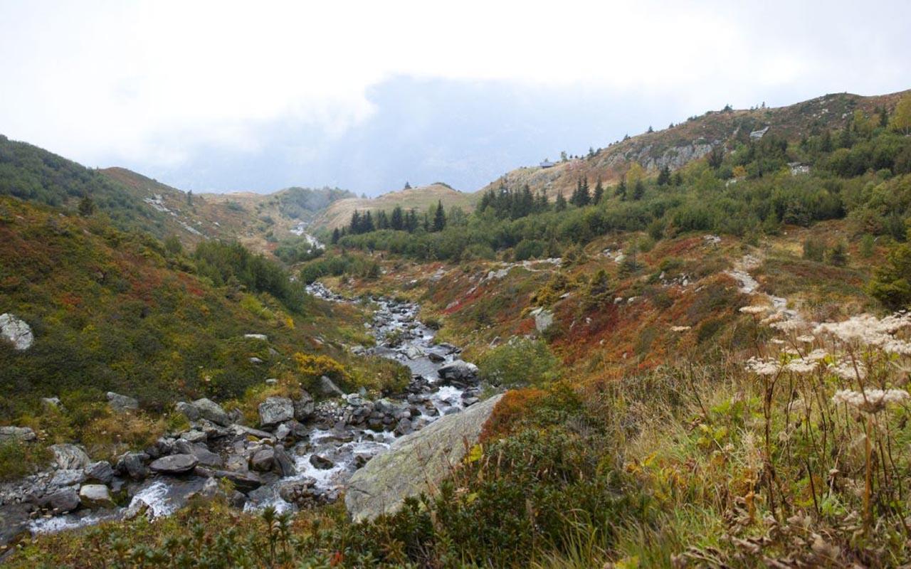 Hiking à Belledone