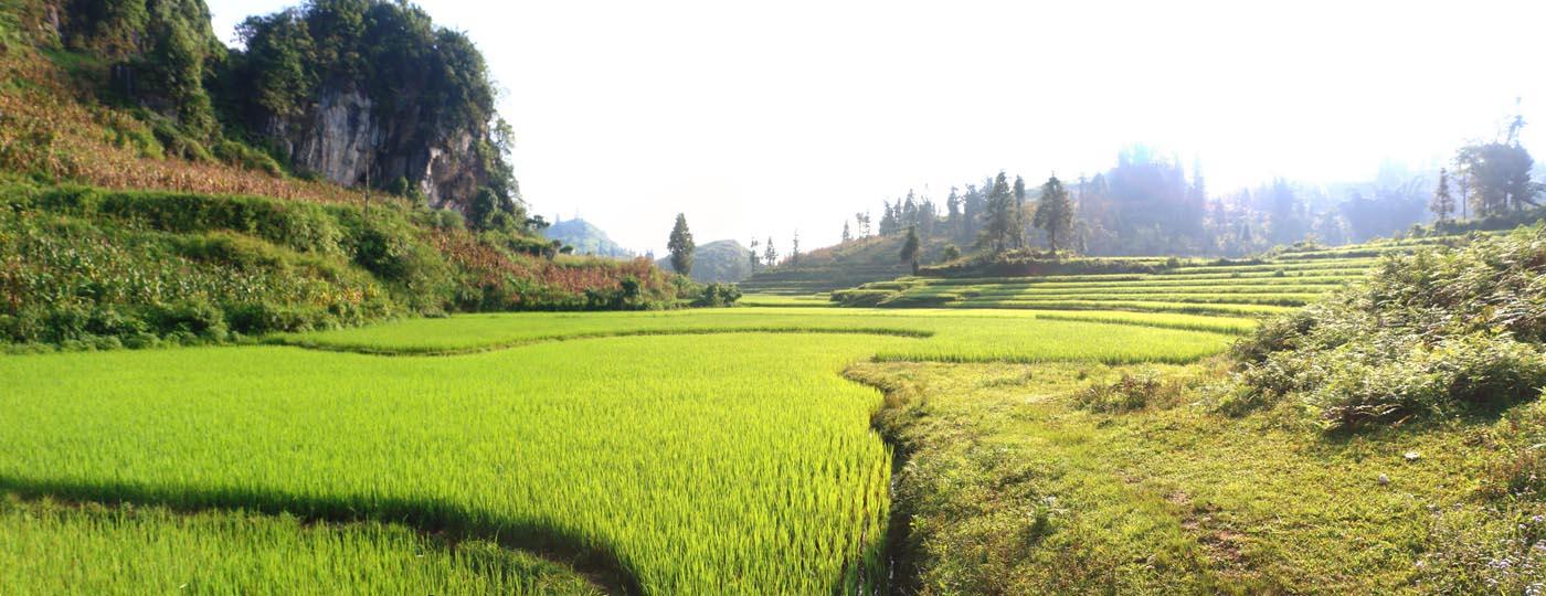 Paysages du Vietnam